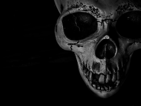 Top View of Human Skull with Texture on Dark Background Horror Concept