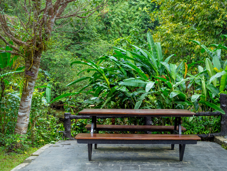 Standard outdoor table with benches on tropical rainforest background. 스톡 콘텐츠