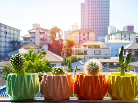 Colorful painted geometric concrete planters with cactus plant on the window on city background. Painted concrete pots for home decoration