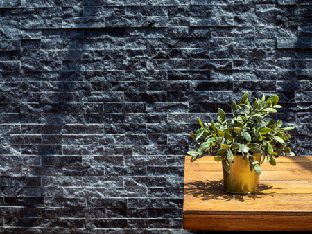 Green plant in metal pot on wooden table on grey brick wall background with copy space.