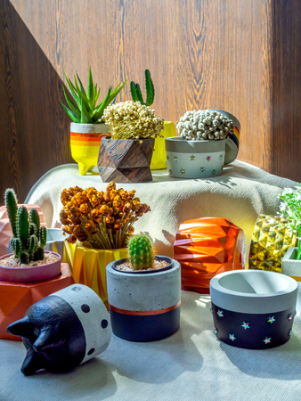 Various flowers and cactus plants with many geometric concrete planters on white fabric on wedoon background vertical style. Painted concrete pots for home decoration