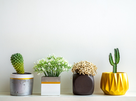 Beautiful various geometric concrete planters with cactus, flowers and succulent plant on white wooden shelf isolated on white wall background with copy space. Painted concrete pots for home decoration 版權商用圖片