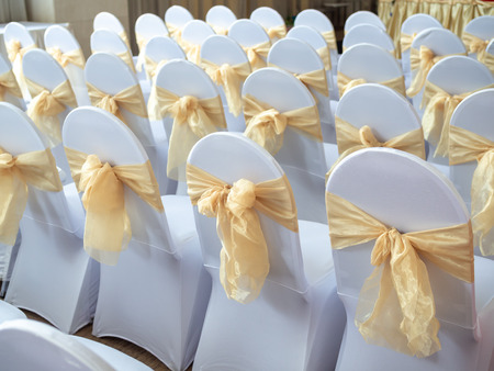 Rows of beautiful white and clean wedding chairs decorated with gold ribbons in wedding ceremony.