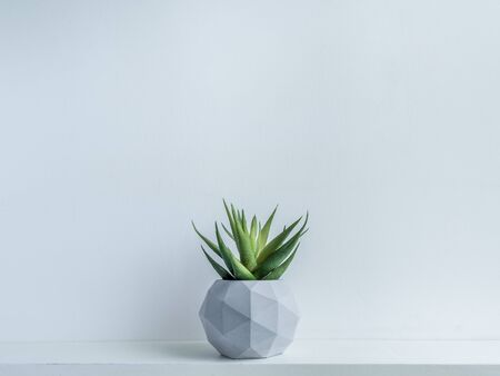 Concrete pot. Green succulent plant in modern geometric concrete planter on wooden shelf isolated on white background with copy space. 스톡 콘텐츠 - 130787186