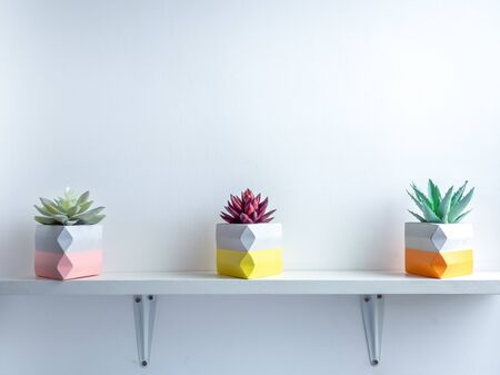 Cactus pot. Beautiful painted concrete pot. Red and green succulent plants in colorful modern triangle concrete planters on white wooden shelf on white wall background with copy space.