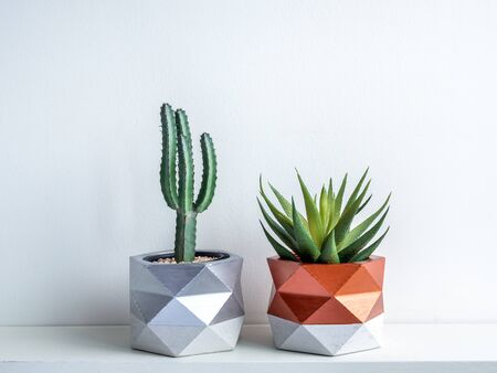 Cactus pot. Beautiful painted concrete pot. Green cactus and succulent plant in geometric concrete planters, copper and silver painted on white wooden shelf on white background.