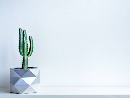 Cactus pot. Beautiful painted concrete pot. Green cactus plant in modern geometric concrete planter, silver painted on white wooden shelf on white wall background with copy space.
