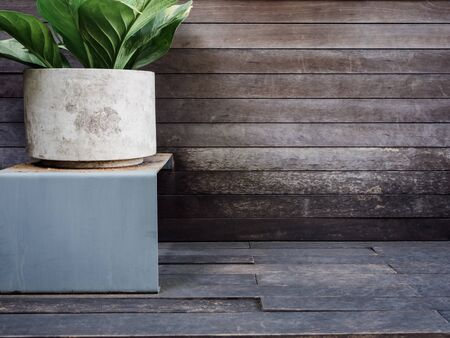 Large round concrete planter or pot with green leaves on wood floor and wall background with copy space.