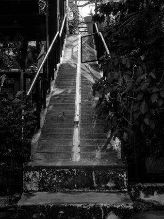 Narrow concrete walkway ramp with stairs up to higher floor between plant and building, black and white style, vertical style.