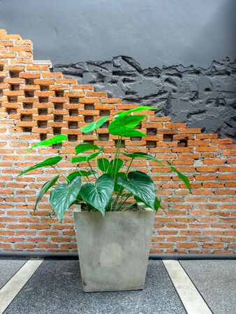 Green tropical palm leaves in concrete pot on brick wall background, vertical style.