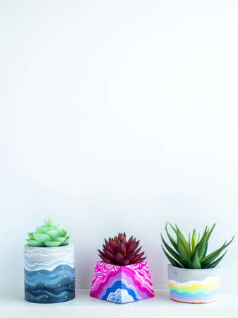 Colorful various DIY concrete pots with beautiful green red succulent plants on white wooden shelf on white wall background with copy space, vertical style. Three unique painted cement planters.