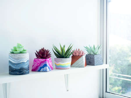 Colorful various DIY concrete pots with beautiful green, pink and red succulent plants decoration on white wooden shelf on white wall background near glass window. Four unique painted cement planters.