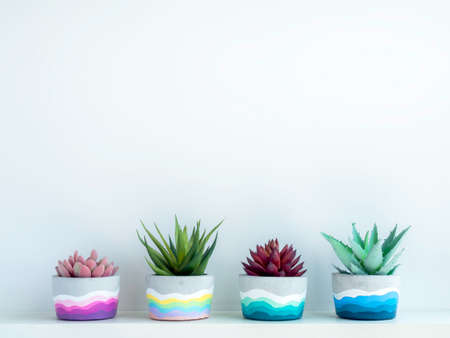 Colorful DIY round concrete pot with beautiful green, pink and red succulent plants on a white wooden shelf on white wall background with copy space. Four unique painted cement planters. Stockfoto