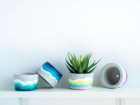 Colorful DIY round concrete pot with beautiful green succulent plant on a white wooden shelf on white wall background with copy space. Four unique painted cement planters.