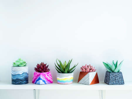 Colorful various DIY concrete pots with beautiful green, pink and red succulent plants decoration on white wooden shelf on white wall background with copy space. Four unique painted cement planters.