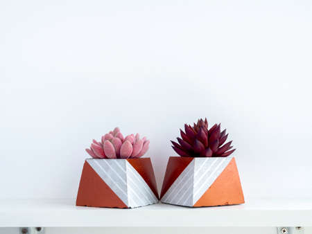 DIY concrete pots, pyramid shape with pink and red succulent plants on a white wooden shelf on white wall background with copy space. Two unique copper color painted cement planters.