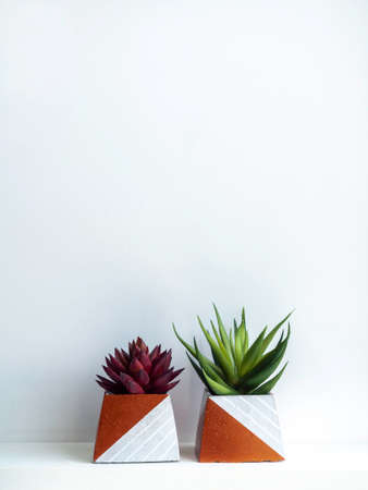 DIY concrete pots, pyramid shape with green and red succulent plants on a white wooden shelf on white wall background with copy space. Two unique copper color painted cement planters, vertical style.