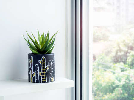DIY round shape concrete pot with cactus drawing with green succulent plant on a white wooden shelf on white wall near glass window. Unique color painted cement planter.