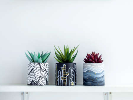 DIY round shape concrete pots with paintings with green and red succulent plants isolated on a white wooden shelf on white wall background with copy space. Three unique color painted cement planters.