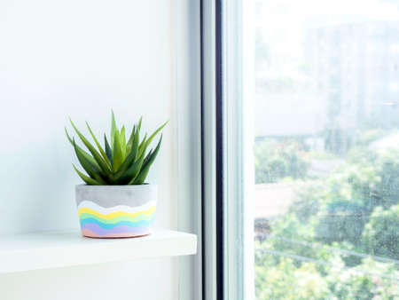 Colorful DIY round concrete pot with green succulent plant on a white wooden shelf on white wall background near glass window with copy space. Unique rainbow color painted cement planter.