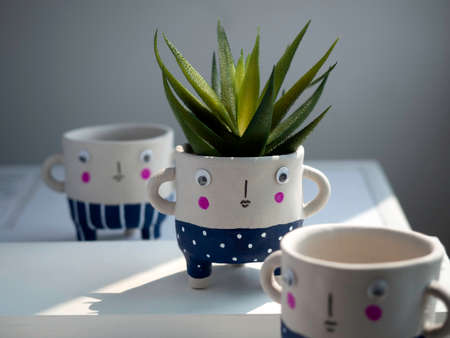 Cute face ceramic plant pots with green succulent plant on white table on white wall background. Close-up three small modern DIY cement planters trendy decoration. Stockfoto