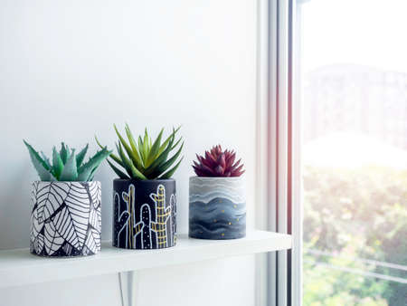 DIY round shape concrete pots with paintings with green and red succulent plants on a white wooden shelf on white wall near glass window with copy space. Three unique color painted cement planters. Stockfoto