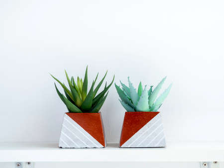 DIY concrete pots, pyramid shape with green succulent plants on a white wooden shelf on white wall background with copy space. Two unique copper color painted cement planters. Stockfoto