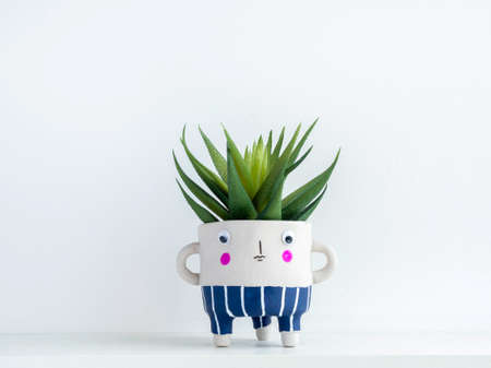 Cute face ceramic plant pot with green succulent plant on white wooden shelf isolated on white wall background with copy space. Small modern DIY cement planter trendy decoration.