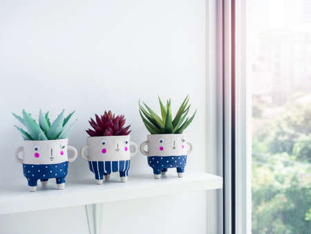 Cute face ceramic plant pots with green and red succulent plants on white shelf on white wall background near glass window with copy space. Three small modern DIY cement planters trendy decoration. Stockfoto