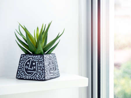 DIY black concrete pot, pyramid shape with art drawing with green succulent plant on a white wooden shelf near glass window. Unique color painted cement planter. Stockfoto