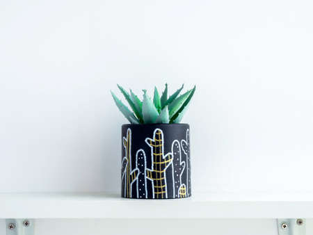 DIY round shape concrete pot with cactus drawing with green succulent plant isolated on a white wooden shelf on white wall background with copy space. Unique color painted cement planter.
