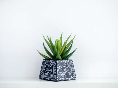 DIY black concrete pot, pyramid shape with art drawing with green succulent plant on a white wooden shelf on white wall background with copy space. Unique color painted cement planter.