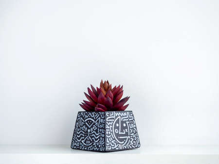 DIY black concrete pot, pyramid shape with art drawing with red succulent plant on a white wooden shelf on white wall background with copy space. Unique color painted cement planter.