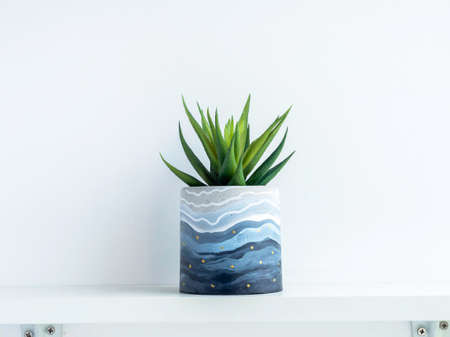 DIY round shape concrete pot with pattern painting with green succulent plant isolated on a white wooden shelf on white wall background. Unique color painted cement planter.