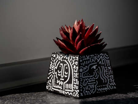 DIY black concrete pot, pyramid shape with art drawing with red succulent plant on dark background. Unique color painted cement planter.