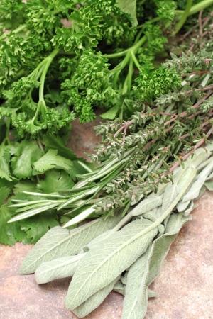 Fresh Herbs   Spices