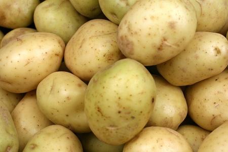黄色いジャガイモをクローズ アップ 写真素材 - 22496332