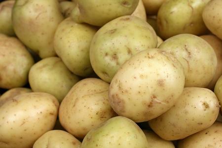 黄色いジャガイモをクローズ アップ 写真素材 - 22496333