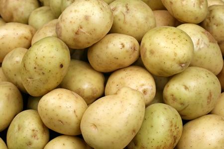 黄色いジャガイモをクローズ アップ 写真素材 - 22496335