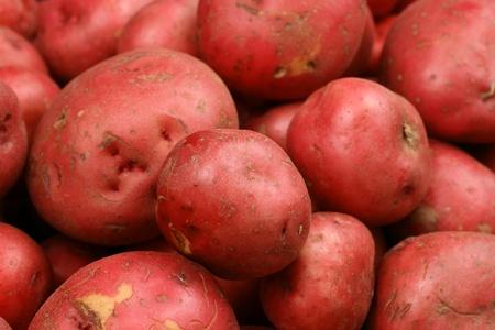 赤いジャガイモをクローズ アップ 写真素材 - 22496339