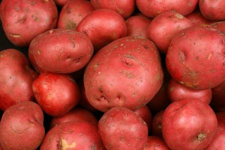 赤いジャガイモをクローズ アップ 写真素材 - 22496349
