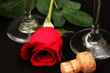 Romantic Rose with champagne flutes