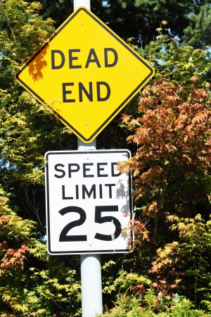 Dead End And Speed Sign photo