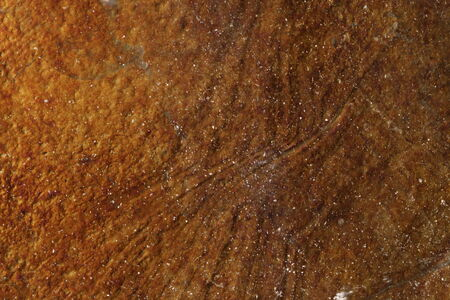 iron oxides: Rusty Mineral Textured Background Stock Photo