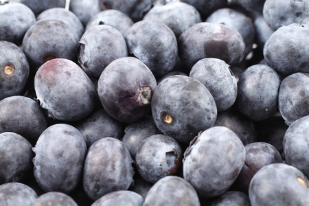 close up: Blueberries Close Up