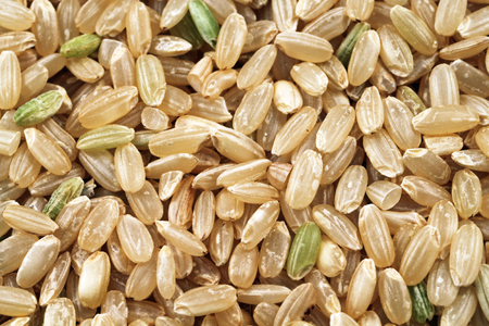 triglycerides: An extreme macro image of whole grain brown rice