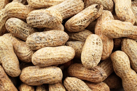 Whole Peanuts Close Up