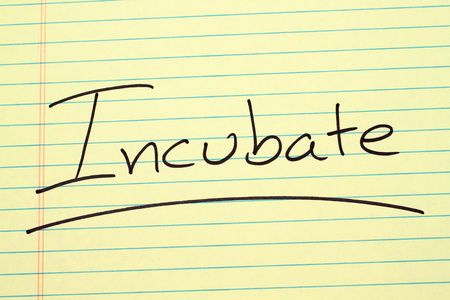 The word Incubate underlined on a yellow legal pad