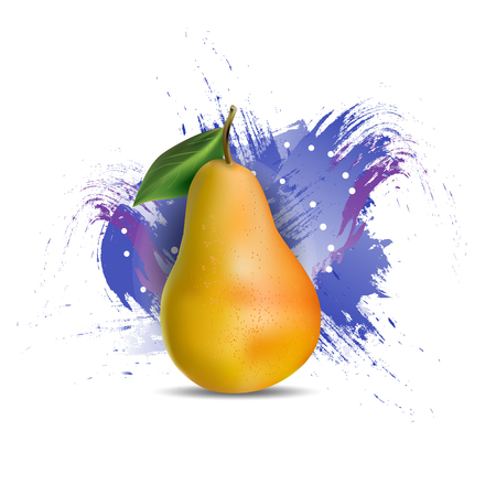 Yellow pear realistic fruit on a blue background Vector illustration.