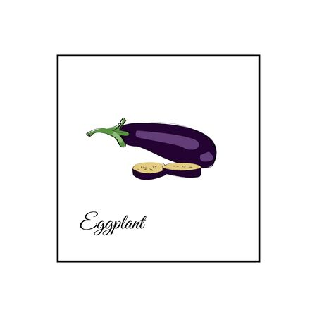 Eggplant whole and sliced vector illustration on a white bckground.